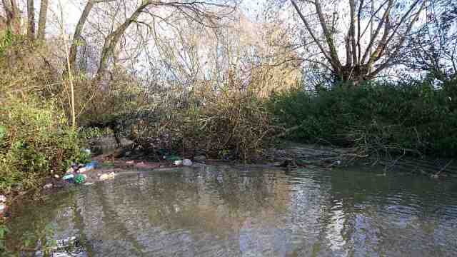 Debris on Bulstake Stream_Nov2014