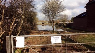 Entrance to the proposed site, 12 Feb 2016. There was not generalised flooding elsewhere, this area floods very early