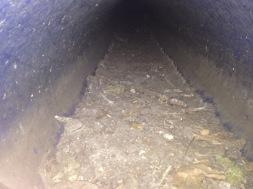Debris along the drain